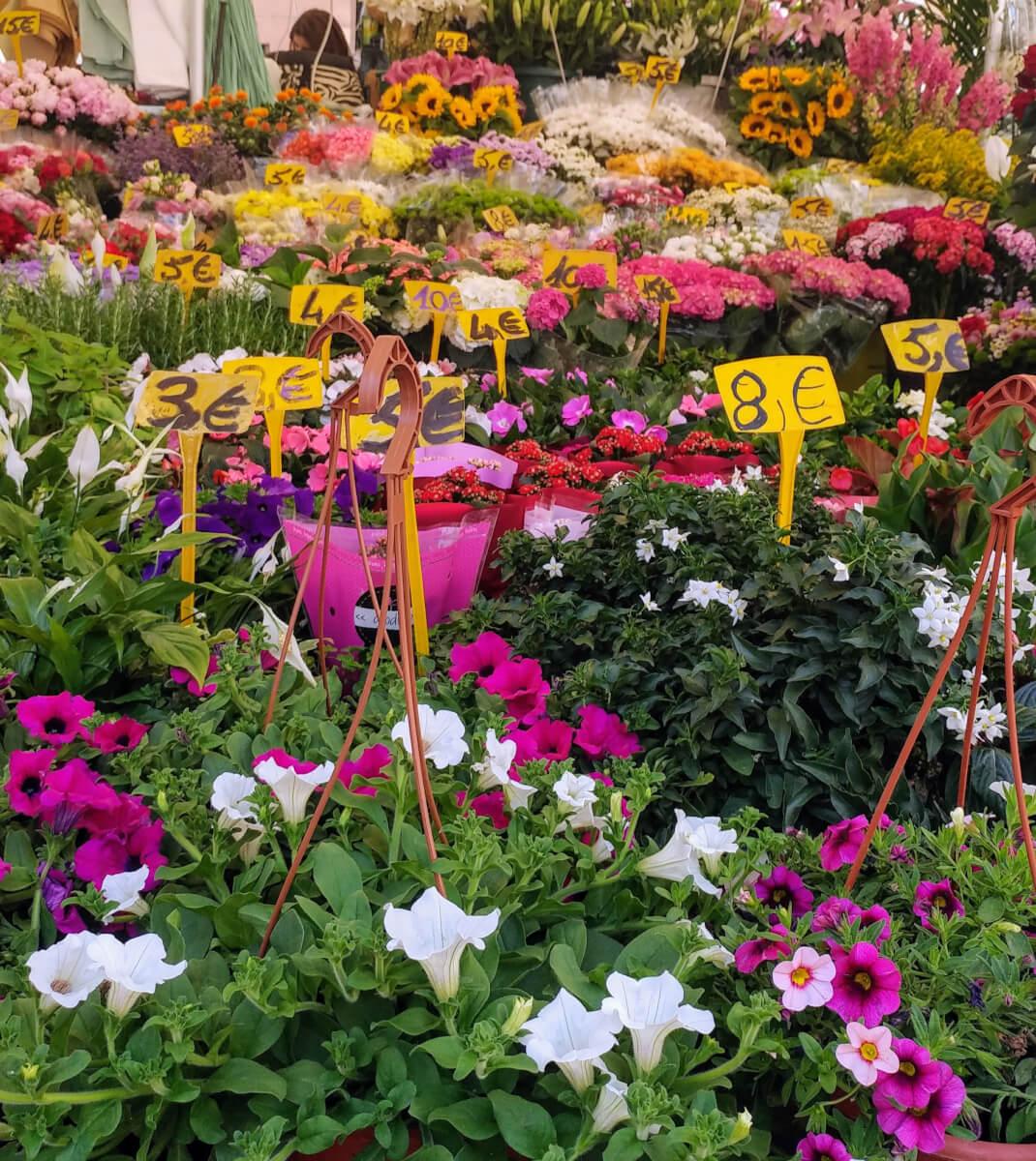 λουλούδια στη πλατεία campo dei fiori στη Ρώμη