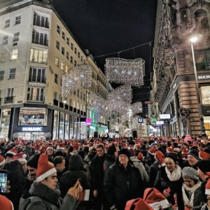 vienna opening of christmas lights