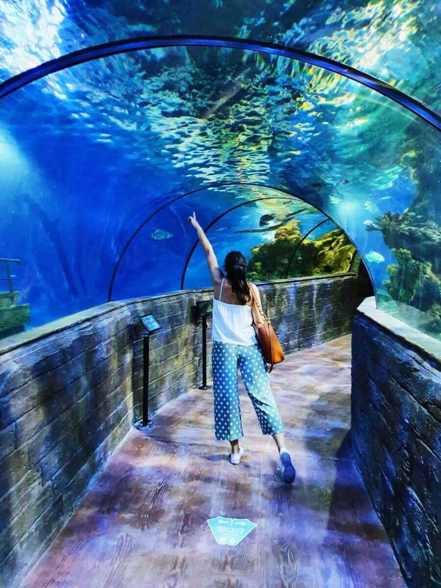 malta aquarium tunnel