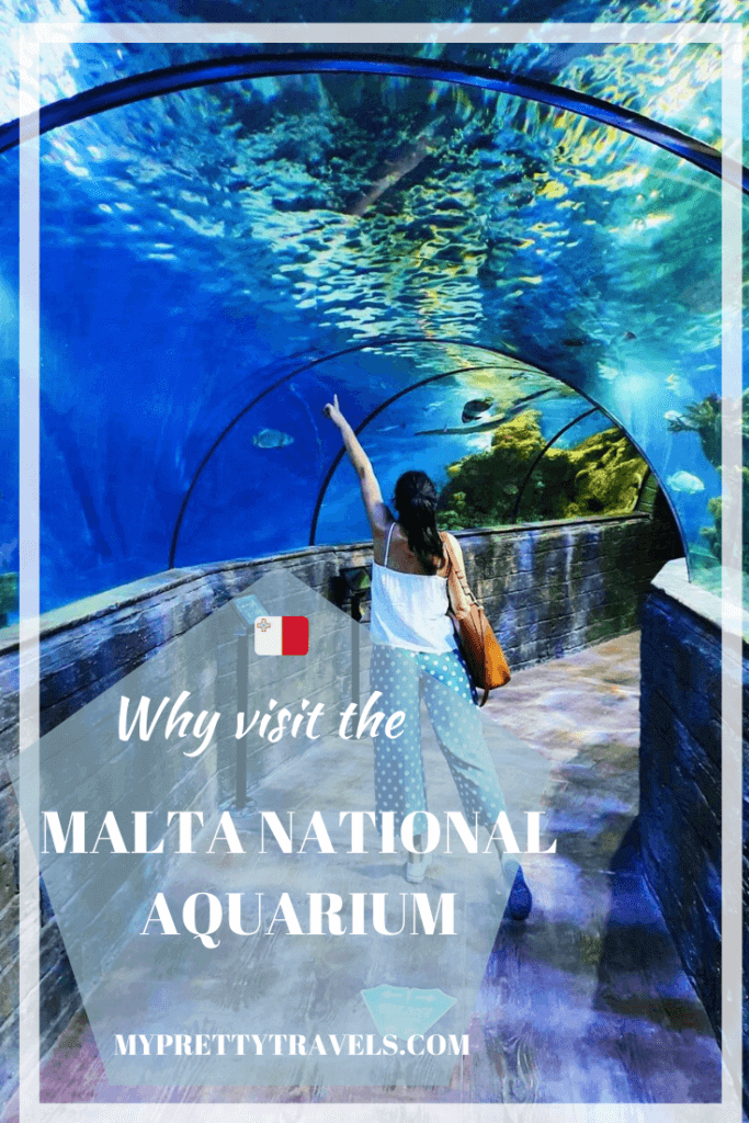 why visit the malta national aquarium